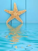 Starfish seashell on wooden blue background with reflection in water.
