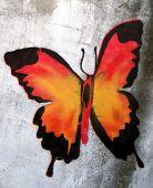 stencil grafitti butterfly