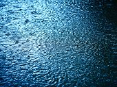 picture of raindrops  - raindrops on the water - JPG