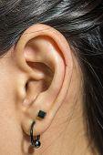 image of human ear  - A Human ear closeup with metal earring - JPG