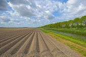 picture of plowed field  - Plowed field with furrows under deteriorating weather - JPG