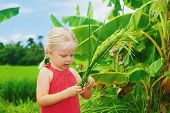 picture of tropical food  - Cute curious baby exploring the nature  - JPG