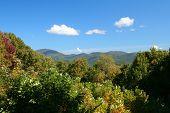 Early Fall Mountain View