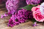 picture of purple rose  - Purple Lilac flowers with pink roses on wooden table close up - JPG