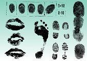 Fingerprints Footprints And Lips
