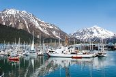 Boats at the Seward, Alaska marina