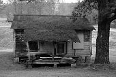 pic of slave-house  - rundown shack supported on cinder blocks in the deep south - JPG
