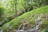 Flowing Water Monasterio De Piedra