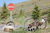 Humorous Jackson Hole, Wyoming, Stop Sign (Whoa)