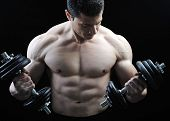 picture of bodybuilder  - The Perfect male body  - JPG