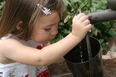 Water In The Bucket