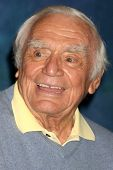 LOS ANGELES - JUL 16:  Ernest Borgnine at the Hollywood Show at Burbank Marriott Convention Center o