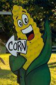 Corn-utopia
