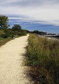 Path Along The Ocean