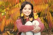 I Love Changing My Hair. Small Girl With Autumn Leaves In Hair. Girl Child With Long Brunette Hair.  poster