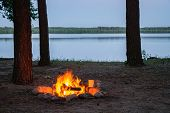 View Of Burning Camp Fire By The Lake At Twilight Surrounded By Tree Silhouettes. Burning Fire Place poster