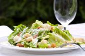 Caesar Salad, served in a garden setting.  Healthy al fresco dining.