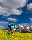 Mountain biking down - woman downhill on bike in dandelion, snowy Dolomites mountain  in the backgro
