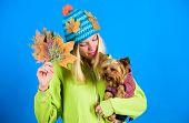 Veterinary Medicine Concept. Health Care For Dog Pet. Regular Flea Treatment. Pet Health Tips For Au poster
