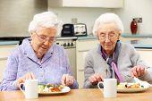 Senior femenino disfrutando comida juntos en casa