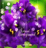 Vector Background with romantische Veilchen auf einem grünen Hintergrund