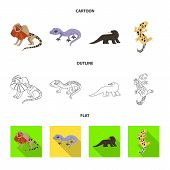 Isolated Object Of Tail And Fauna Sign. Collection Of Tail And Environment Vector Icon For Stock. poster