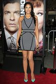 LOS ANGELES - FEB 4: Kali Hawk at the Premiere Of Universal Pictures' 'Identity Theft' on February 4