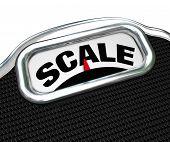 Das Wort Skala auf einem Messgerät oder Tool zur Bestimmung der Masse, und wenn yo Eichgewicht