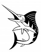 pic of spearfishing  - isolated White marlin  - JPG