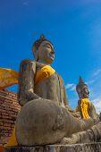 Stone Ancient Buddha statue