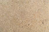 Unrefined Sand Texture