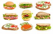 Collage der sandwiches