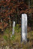 Tombstones In Line
