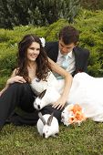wedding, beautiful young bride with groom in love with two rabbits, park summer outdoor