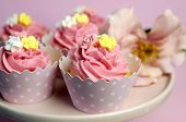 Beautiful Pink Decorated Cupcakes On Pink Cake Stand For Birthday, Wedding Or Female Special Event O