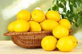 Ripe lemons in wicker basket on table on bright background