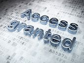 Privacy concept: Silver Access Granted on digital background