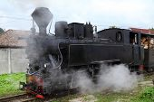 Mocanita touristic train - The last forestry steam working train in Europe - Romania, Maramures