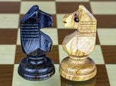 Two Chess Horse Faced
