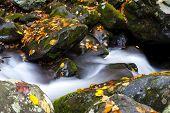 Creek In Fall