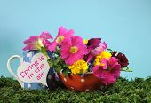 Beautiful Springtime Bright And Colorful Floral Display On Green Grass With Petunia, Marigold And Ro