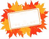 Autumnal frame with maple leaves for Thanksgiving day
