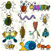 Cute Bugs And Funny Insects