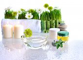 spa treatment items  with green grass and flowers on wet background