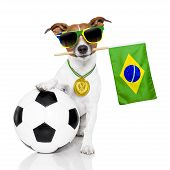 stock photo of jacking  - football soccer dog with ball and brazilian flag and sunglasses - JPG