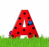 Alphabet Lady Bug Red A