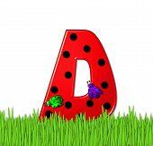 Alphabet Lady Bug Red D