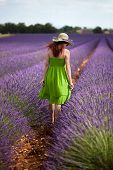 Lady Walking In Lavender Field, Wearing Green Dress And Nostalgic Hat.