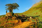 Landscape Of Phutabberk