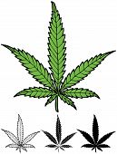 stock photo of ganja  - Hand drawn hemp leaf in 4 versions including silhouette - JPG